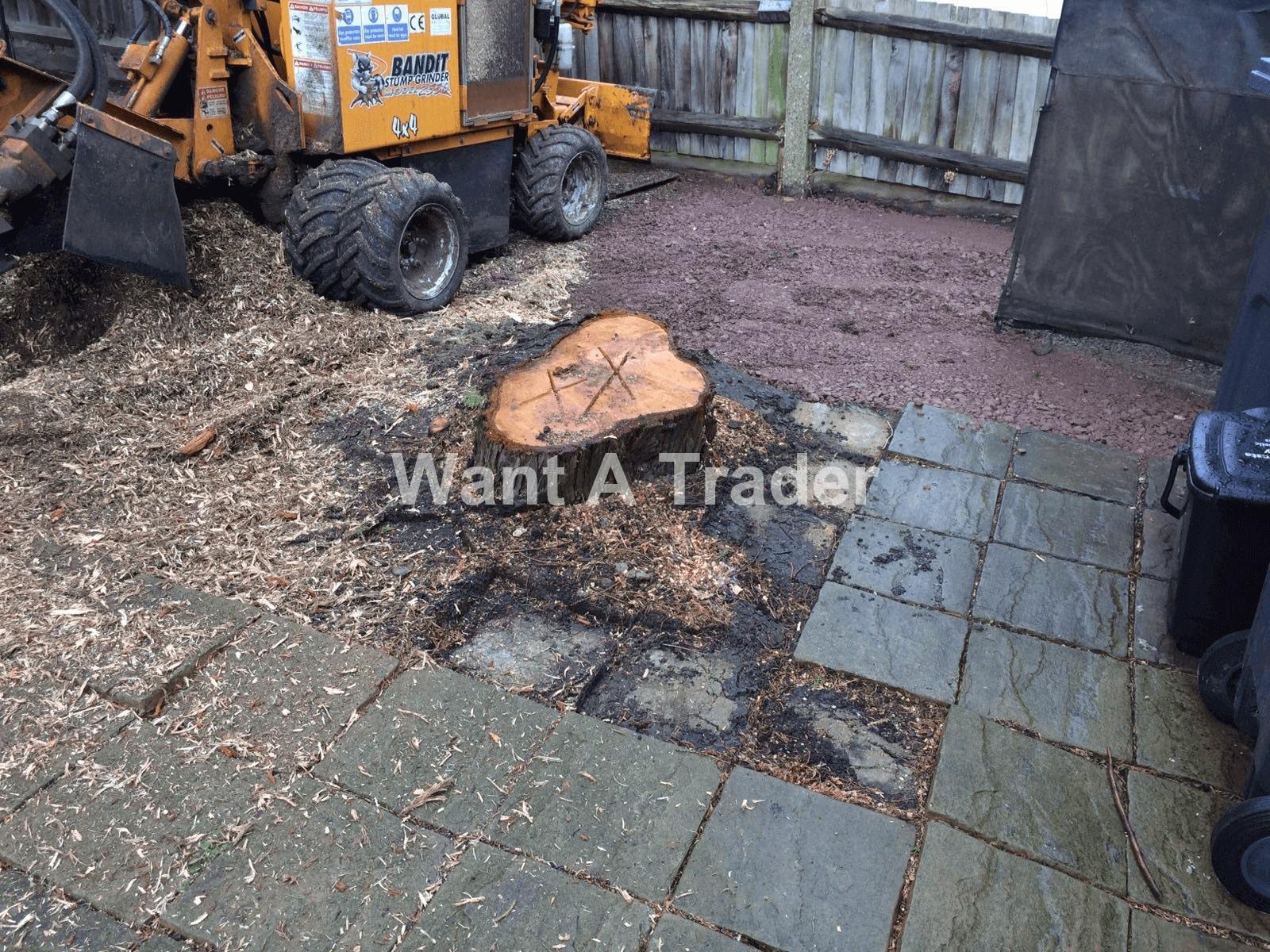 Garden Clearance and Maintenance Company Epsom KT19